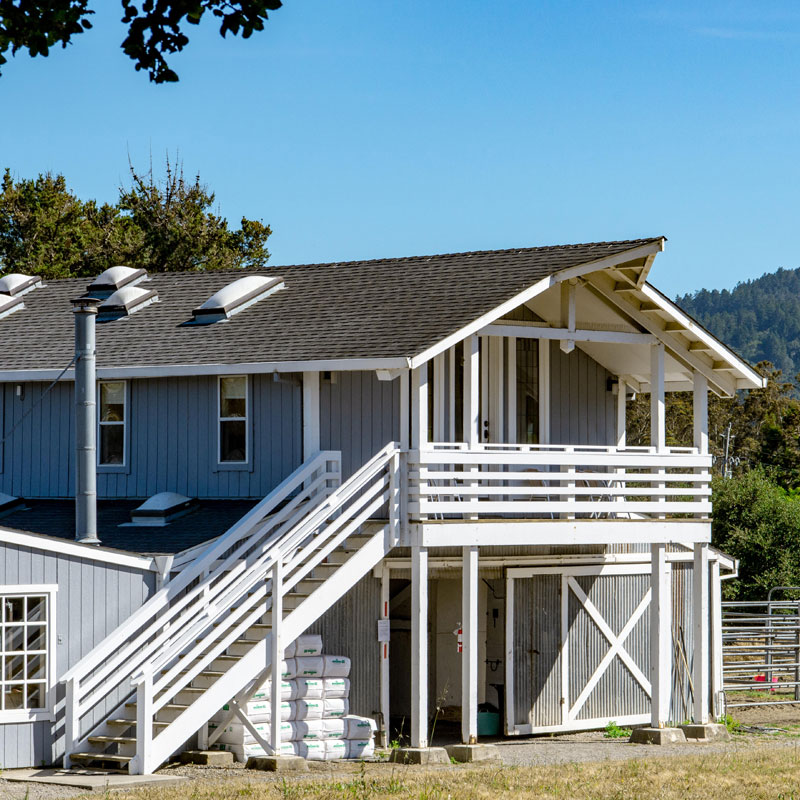 Point Reyes Vacation Rentals for Families and Groups with Horses