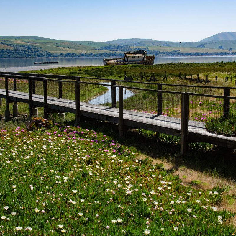 Point Reyes National Seashore Vacation Cottage Rentals Waterfront On Tomales Bay Incredible Views